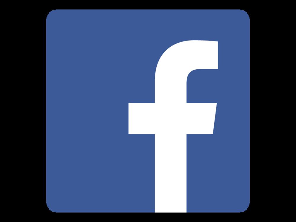 Facebook Victor Ebner Institute